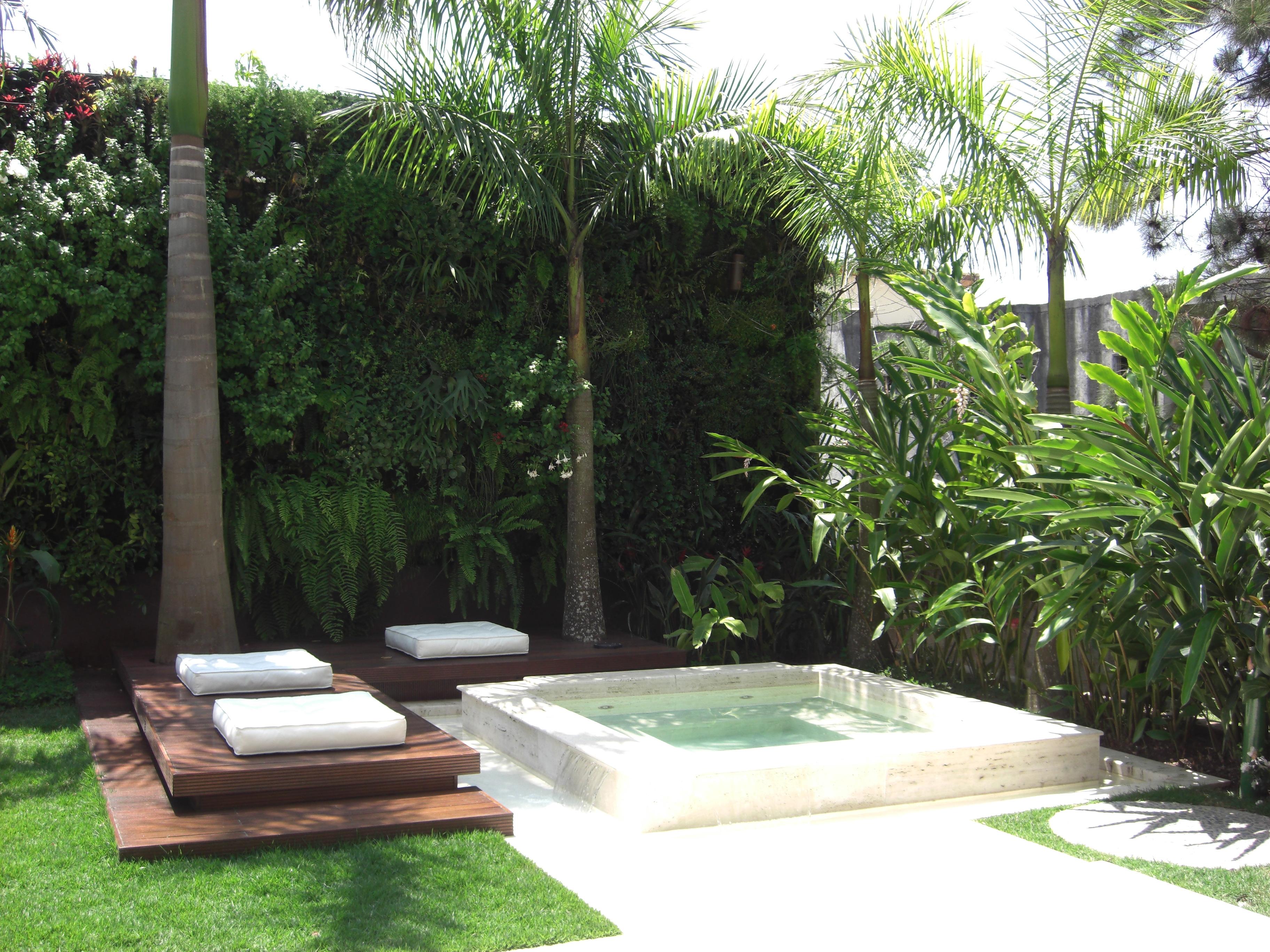 , cuidar e escolher as espécies certas para um lindo jardim vertical
