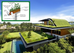 Foto 12 - verdes-telhados